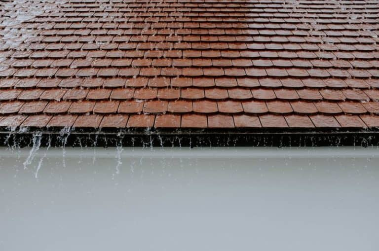 rsz_roof_wet 800x